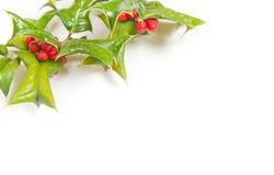 Weihnachtsrahmen mit Studioschuß Stockbilder