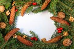 Weihnachtsrahmen von der Nadel, von der Kiefer, von der Nuss und von der weißen Mitte Lizenzfreie Stockbilder