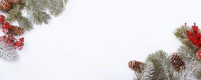 Weihnachtsrahmengrenze auf Weiß, Niederlassungen, Kegeln und roten Beeren stockfotografie