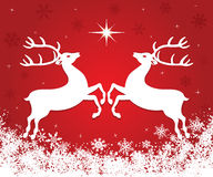 Weihnachtsren Lizenzfreie Stockbilder