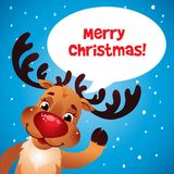 Weihnachtsren-Rotwekzeugspritze Lizenzfreies Stockfoto