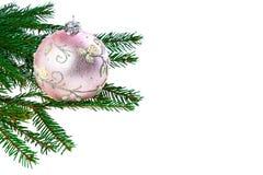 Weihnachtsrosa Kugel und Tannenbaum Lizenzfreie Stockbilder