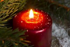 Weihnachtsrote Kerzenesprit-Tannennahaufnahme Lizenzfreies Stockfoto