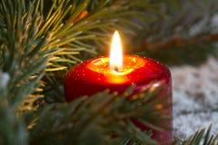 Weihnachtsrote Kerzenesprit-Tannennahaufnahme Lizenzfreies Stockbild