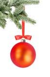 Weihnachtsroter Ball und Weihnachtsbaumast lokalisiert über Weiß Stockfotografie