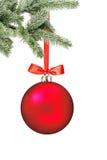 Weihnachtsroter Ball und Weihnachtsbaumast lokalisiert über Weiß Lizenzfreies Stockbild