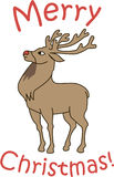 Weihnachtsrotwild Stockbild