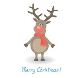 Weihnachtsrotwild Lizenzfreie Stockbilder