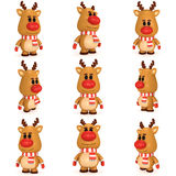 Weihnachtsrotwild mit roter Nase tragen Schal und Handschuhe Lizenzfreie Stockbilder