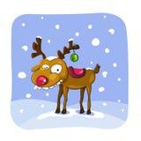 Weihnachtsrotwild mit Schnee auf Hintergrund lizenzfreie abbildung