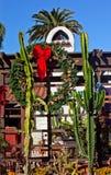 Weihnachtssaguaro-Kaktus-Garten altes San Diego Lizenzfreies Stockbild