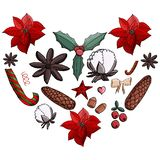 Weihnachtssatzpoinsettia, Kegel, Baumwolle omela, Zimt, Moosbeere, Nüsse, Stern, Zuckerstange, Bogen in der Herdform stock abbildung