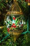 Weihnachtsschein Lizenzfreie Stockfotos