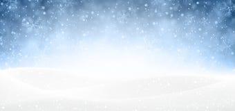 Weihnachtsschneebedeckte Fahne Stockbild