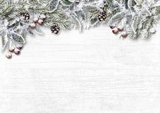 Weihnachtsschneebedeckter Tannenbaum mit Stechpalme, Kegel, Frost auf hölzernem Weiß Lizenzfreie Stockbilder