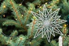 Weihnachtsschneeflocken-Flockendekoration auf Kiefer Stockbild