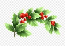 Weihnachtssichelförmige Stechpalmen-Niederlassungsillustration Stock Abbildung