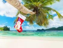 Weihnachtssocke auf Palme am exotischen tropischen Strand Lizenzfreies Stockbild