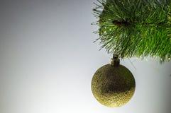 Weihnachtsspielzeug auf einem einzelnen Zweig Weihnachtsbaum Lizenzfreie Stockfotografie