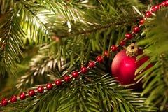 Weihnachtsspiritus? mit Sankt und Noel Stockbild