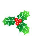 Weihnachtsstechpalme lizenzfreie abbildung
