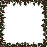 Weihnachtsstechpalme-Feld auf Weiß Stockfotos