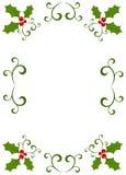 Weihnachtsstechpalmefeld Stockfotos