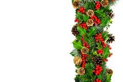 Weihnachtsstechpalmerand horizontal Stockbild