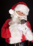 Weihnachtssteckfassung Russel Stockfoto