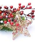 Weihnachtsstern Stockfotos
