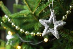 Weihnachtsstern auf Weihnachtsbaumast Stockfotografie