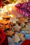 Weihnachtsstern-Plätzchen Stockbilder