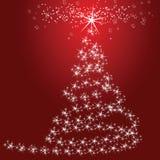 Weihnachtssterne Stockfoto