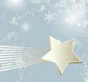 Weihnachtssternschnuppe Stockfotos