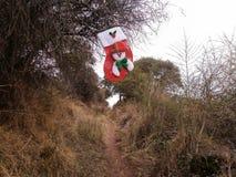 Weihnachtsstiefel, der am Baum hängt lizenzfreie stockfotografie