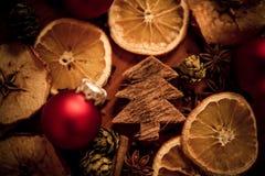 Weihnachtsstillleben mit Frucht und Gewürzen lizenzfreie stockfotos