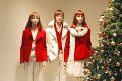 Weihnachtssystemfenster Stockfotos