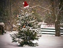 Weihnachtsszene. Stockfoto