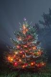 Weihnachtsszenisches Foto Lizenzfreies Stockfoto