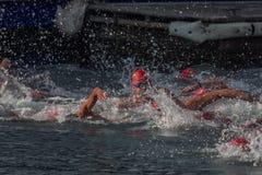 WEIHNACHTStageshafen-SCHWIMMEN 2015, BARCELONA, Hafen Vell - 25. Dezember: Schwimmerrennen auf 200 Metern Abstand Stockfotos