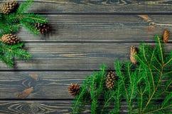 Weihnachtstannen-Baum auf hölzernem Hintergrund mit Kegeln Stockfotografie