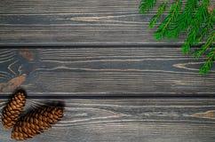Weihnachtstannen-Baum auf hölzernem Hintergrund mit Kegeln Stockfoto