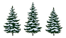 Weihnachtstannenbäume lizenzfreie abbildung
