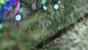 Weihnachtstannenbaum verziert mit neues Jahr ` s Ball stock footage