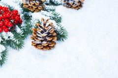 Weihnachtstannenbaumrahmen auf weißem Schnee Lizenzfreie Stockfotografie