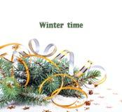 Weihnachtstannenzweig mit Goldausläufern und -sternen Lizenzfreies Stockfoto