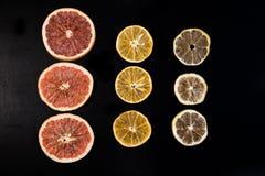 Weihnachtstrockene Orangen Pampelmuse, Zitrone auf einem dunklen Hintergrund lizenzfreie stockfotos