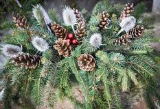 Weihnachtsverzierung mit Kiefernkegel Stockfoto