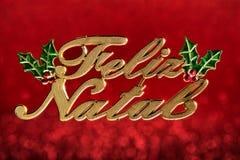 Weihnachtsverzierung schrieb Lizenzfreies Stockfoto
