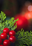 Weihnachtsverzierungen Stockfotos